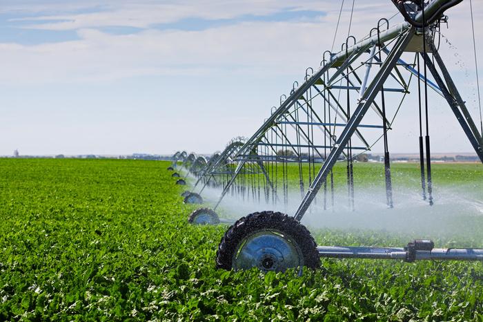 افتتاح و کلنگزنی ۴۸ پروژه تولیدی خدماتی بخش کشاورزی در ایلام