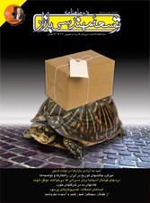 مجله توسعه مهندسی بازار 32