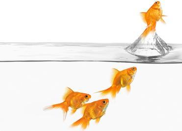 ویژگیها و رفتارهای رهبران کسب و کار در قرن بیست و یکم