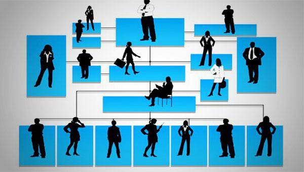 ساختار سازمانی چیست و انواع آن کدامند؟